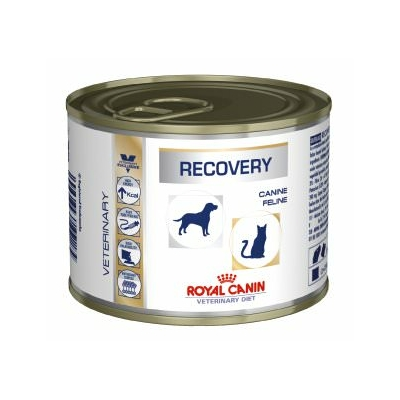 royal canin dog cat recovery can