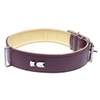 Collier pour Chien The Zazu Balata Classic Purple