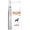 Royal Canin Veterinary Diet Chien Gastro Intestinal Low Fat LF22