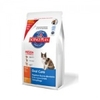 Hill's Science Plan Feline Adult Oral Care Poulet