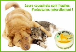 Bio-Palm-Protection-Coussin