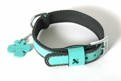martin sellier image collier chien cuir bowxy