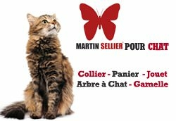 Martin-Sellier-chat