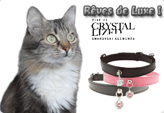 collier-strass-chat
