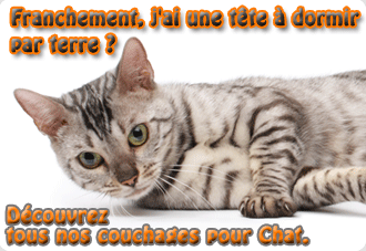 corbeille-chat-meganimo