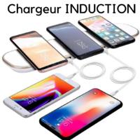 Chargeur à Induction Recharge Sans Fil Rapide pour Smartphone Compatible Système Qi Wireless Power