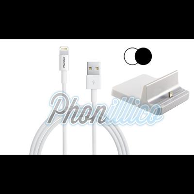Dock Secteur + Cable USB pour Apple iPad Air 1