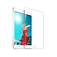 Film en verre trempé iPad Mini