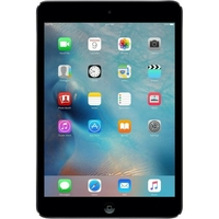 iPad mini Wifi + 4G 16GB noir