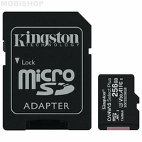 KINGSTON Canvas Select Plus microSD 256GO