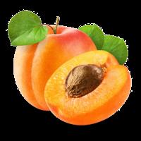 Pâte Abricot seau 5 kg