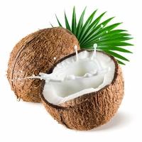 Aromatisation Coco bello en poudre  4 - 6%  -sachet 2 kg