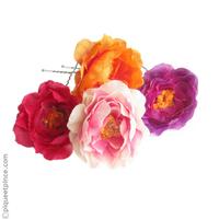 pics cheveux fleurs colorées