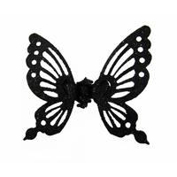 papillon de nuit (4)