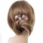 pics cheveux pétales argentés et roses
