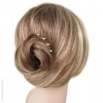 pics à cheveux  mini fleurs strass