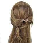 pince à cheveux or pailleté or