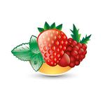 Fraise Berry