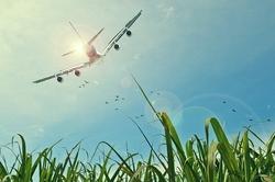 vapoter-en-avion