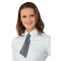 Petite Cravate Fines Rayéres