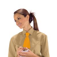 Petite Cravate Abricot