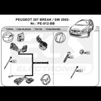 SET0198 Faisceau spécifique 307 SW phase1