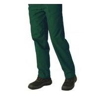 Pantalon Vert de Travail