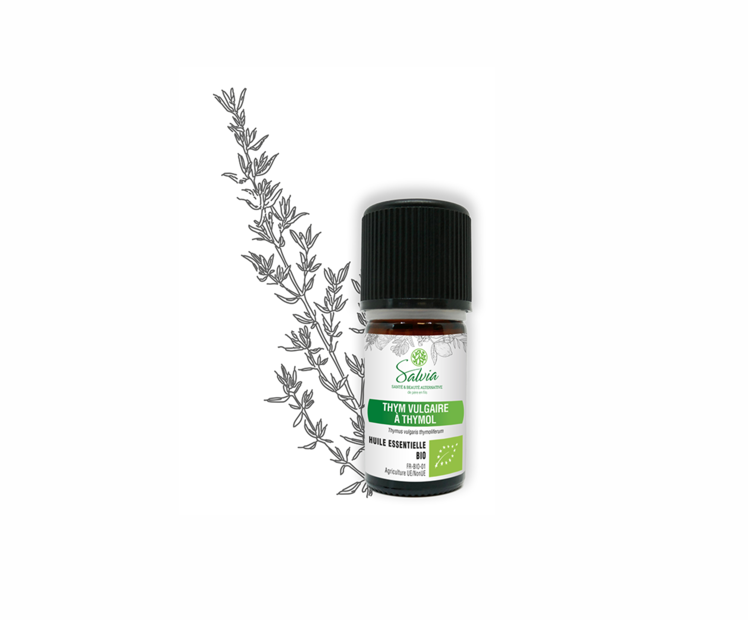 Huile essentielle de Thym Vulgaire à Thymol Bio - 5 ml