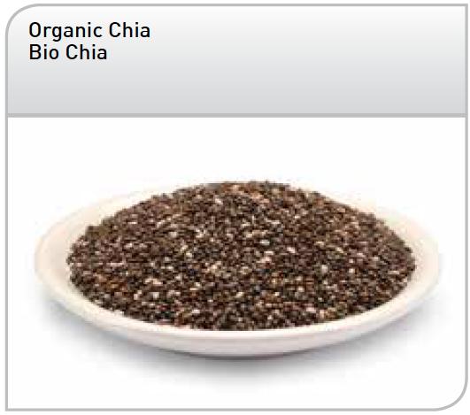 Graines de Chia Noires bio - Salvia Hispanica L.