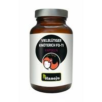 Fallopia Multiflora Fo-Ti 20:1 - 90 capsules - 500 mg