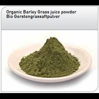JUS d'herbe d'orge crue et bio en poudre - 250 g