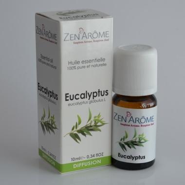 huile-essentielle-eucalyptus