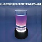 Phycocyanine