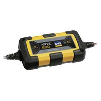 Chargeur de batterie 12V 25Ah
