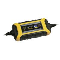 Chargeur de batterie 12V 40Ah