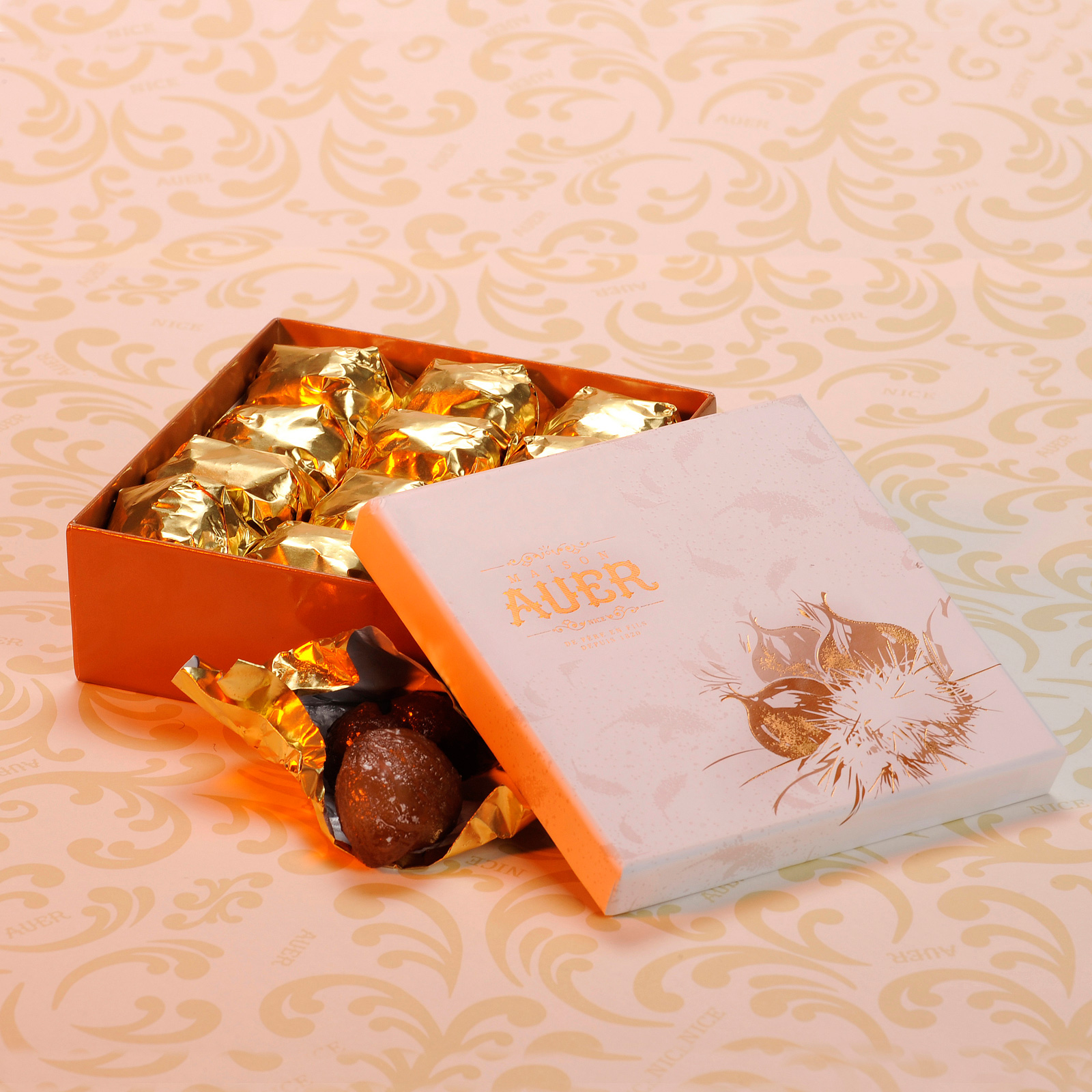 marrons-coffret-T1