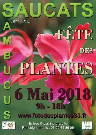 AFFICHE-SAMBUCUS-2018 (1)