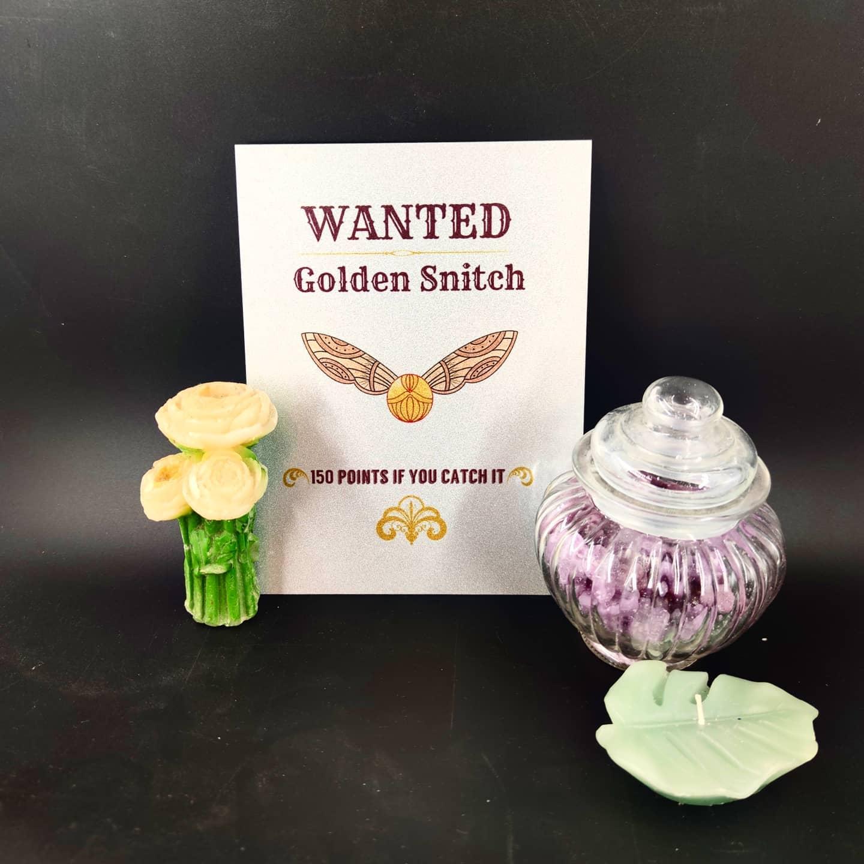 plaque en métal : Golden Snitch (moyen)