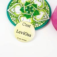 Badge : C'est Leviosa