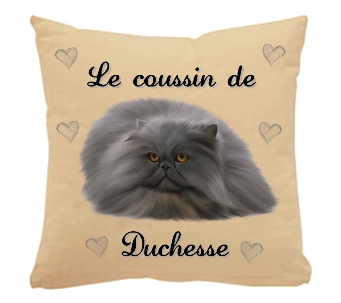 31ef3859cb0 Coussin pour chat Persan personnalisé avec le nom de votre animal ...