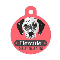 Médaille pour chien Dalmatien personnalisée avec nom, numéro de téléphone