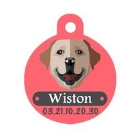 Médaille pour chien Labrador personnalisée avec nom, numéro de téléphone
