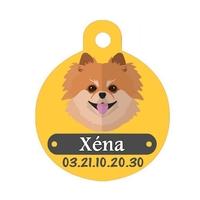 Médaille pour chien Spitz personnalisée avec nom, numéro de téléphone