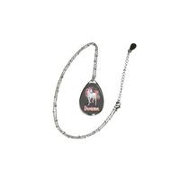 Collier pendentif ovale Licorne personnalisé avec prénom