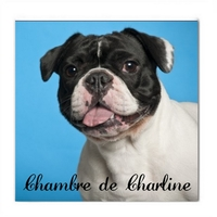 Plaque de porte Chien Bouledogue français personnalisée avec prénom