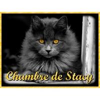 Plaque de porte en aluminium Chat Chaton personnalisée avec texte au choix