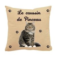 Coussin pour chat chaton personnalisé avec le nom de votre animal