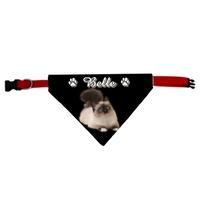 Collier pour chat bandana Birman personnalisé avec le nom de votre animal