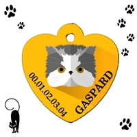 Médaille coeur pour chat Shorthair personnalisée avec nom et n°de téléphone