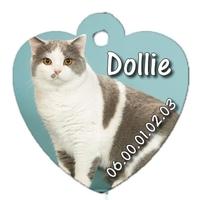 Médaille pour chat British personnalisée avec nom, numéro de téléphone....